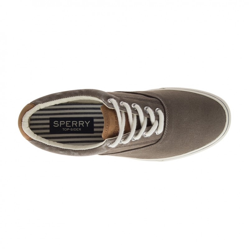 Sperry Striper LL Cvo S038 CHOCOLATE