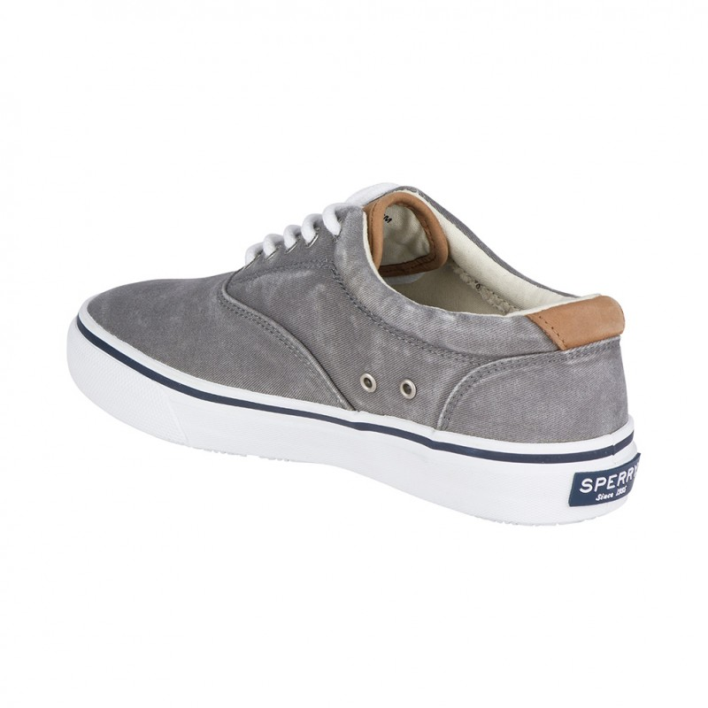 Sperry Striper LL Cvo S221 GREY