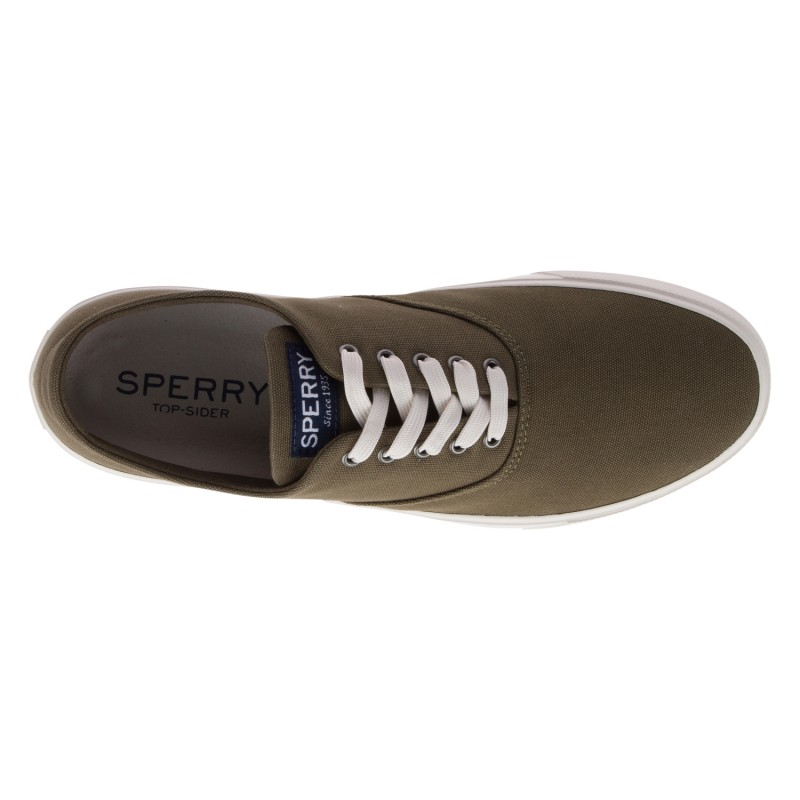 Sperry Captain CVO *NEW* S364 OLIVE